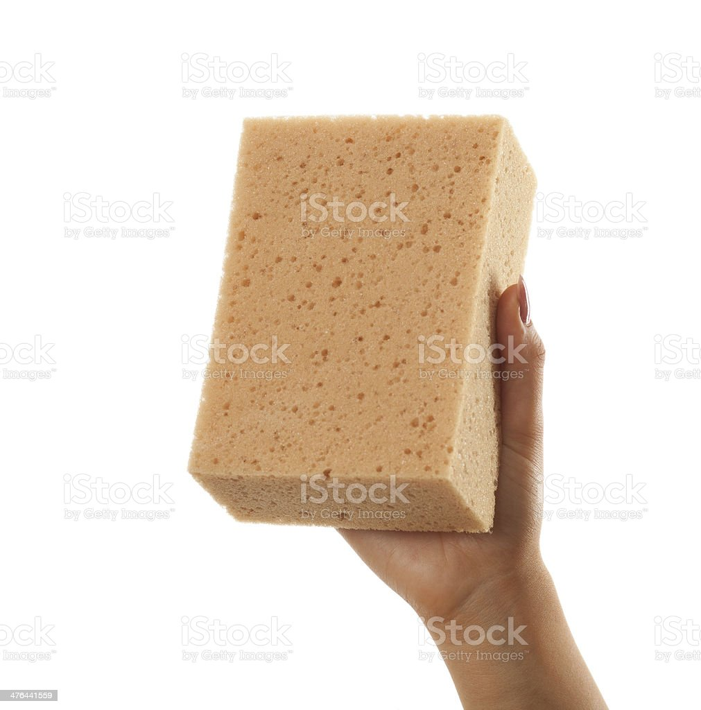 Woman hand holdding a large dry sponge on white royalty-free stock photo