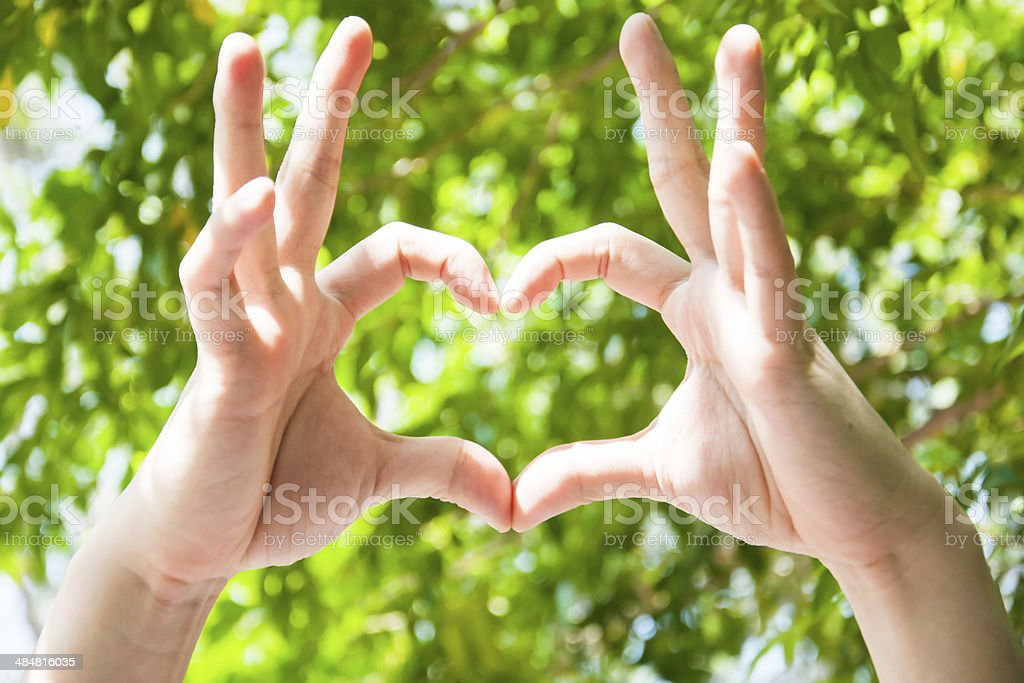 Woman hand making sign Heart isolated on tree background royalty-free stock photo