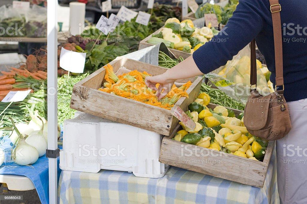 Woman hand picks squash blossoms at farmers market royalty-free stock photo