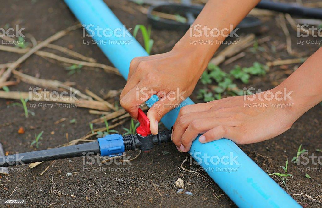 Woman hand twist Red Water valve stock photo