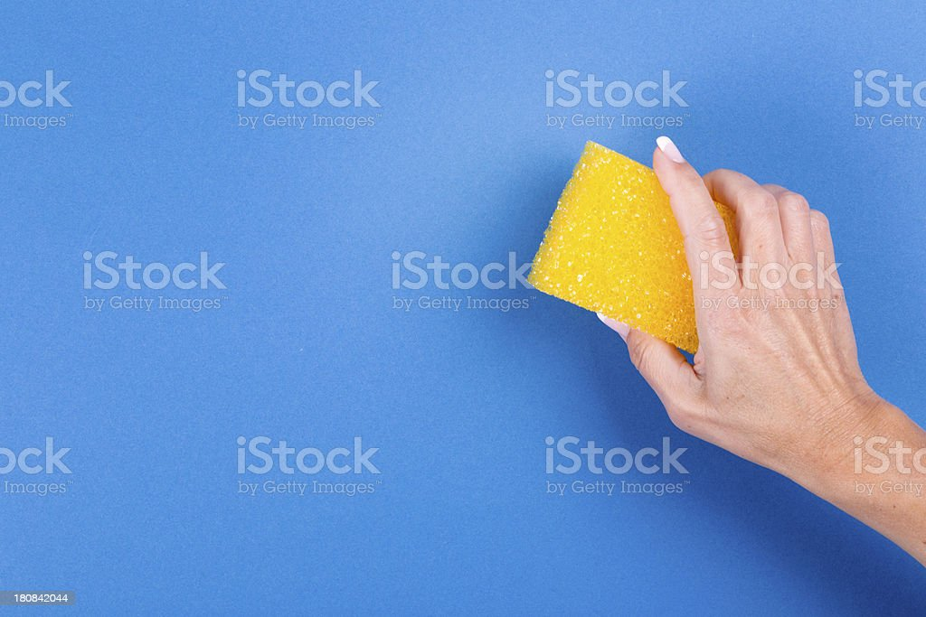 woman hand with sponge against blue background stock photo