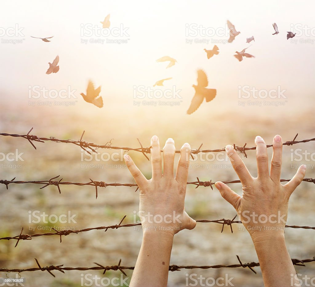 Woman hands hold rusty sharp wire with hope for freedom stock photo