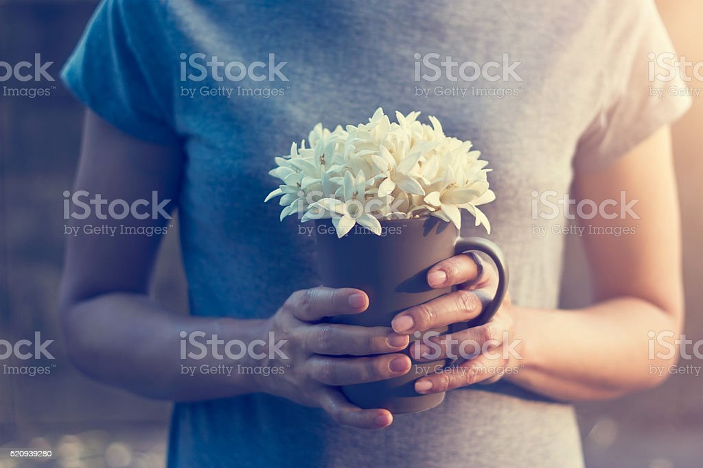 Woman hands holding white flowers in cup on falling flowers stock photo