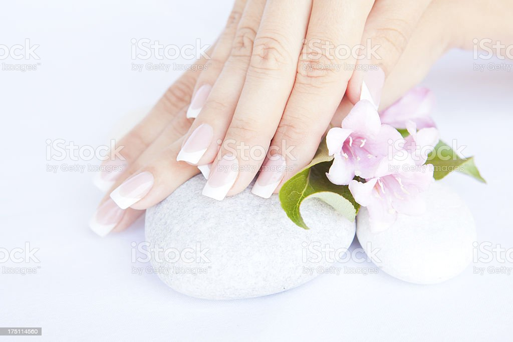 woman hands with beautiful french manicure nails stock photo