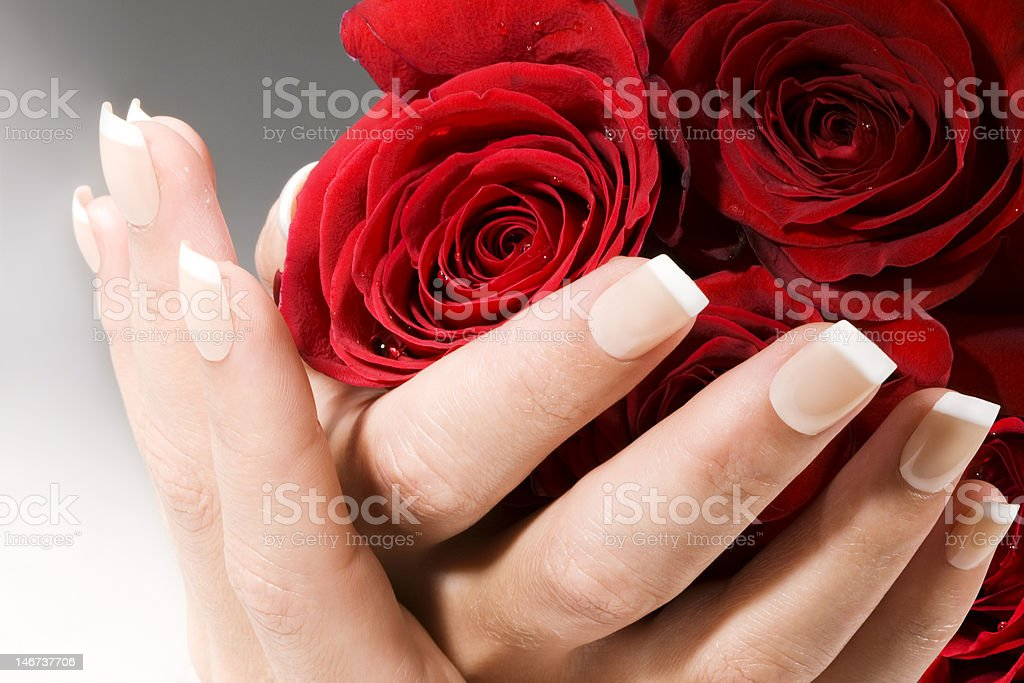 Woman hands with red roses royalty-free stock photo