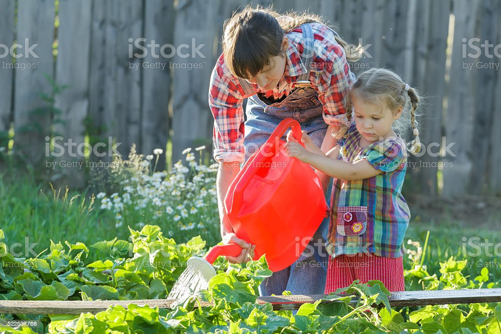 Woman helping her daughter to pour cucumbers stock photo