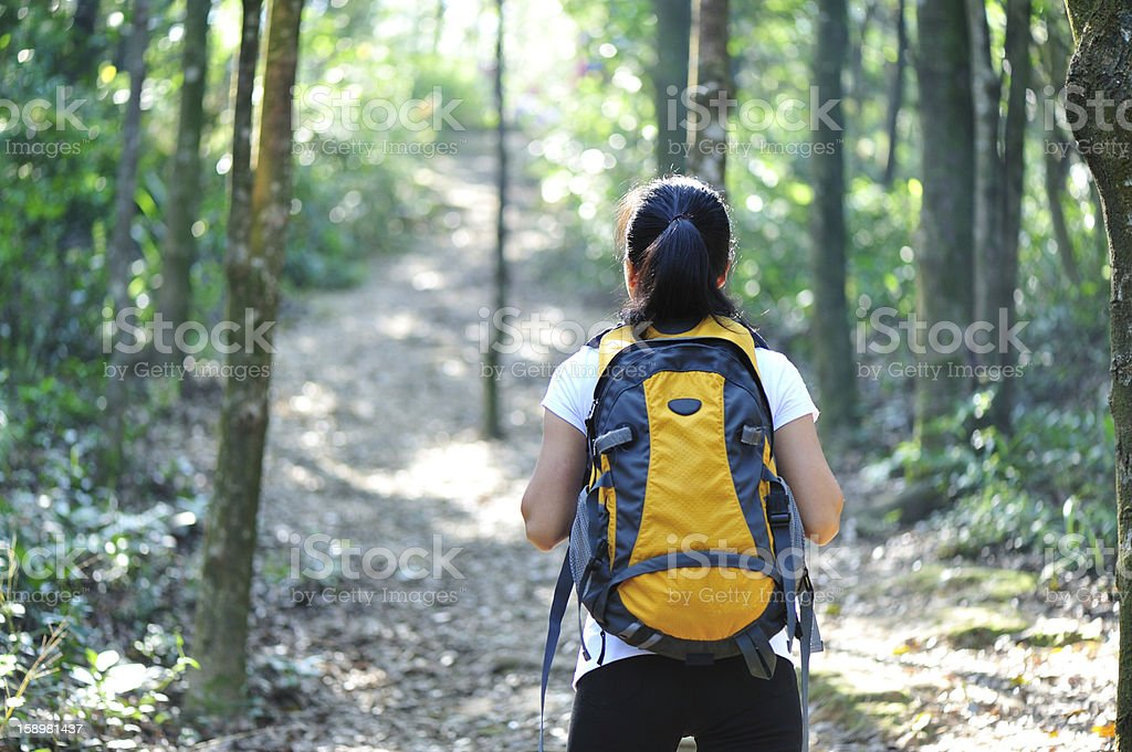 woman hiker in forest royalty-free stock photo
