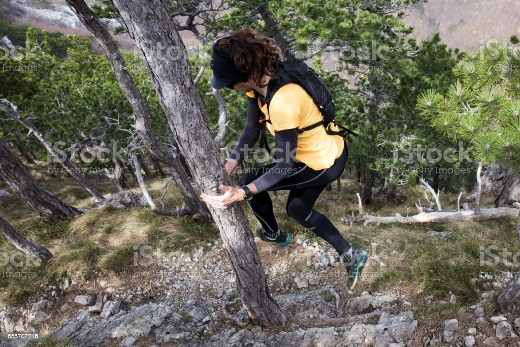 A woman hiker jumping around a pine by touching it. National park Paklenica, the part of Velebit; the largest mountain range in Croatia. stock photo