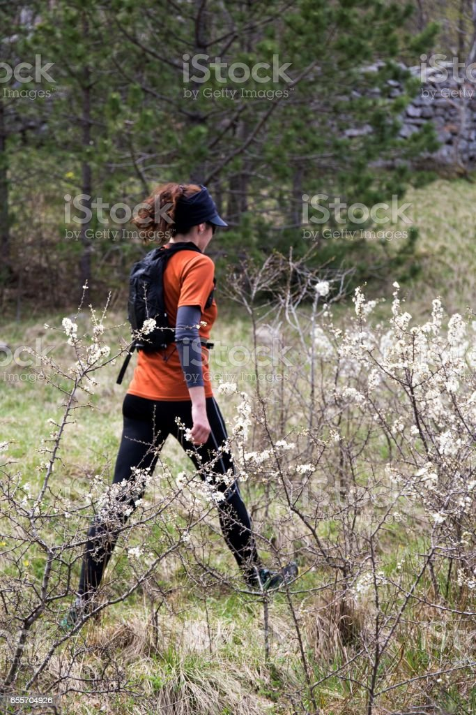 A woman hiker walking on a glade. National park Paklenica, the part of Velebit; the largest mountain range in Croatia. stock photo