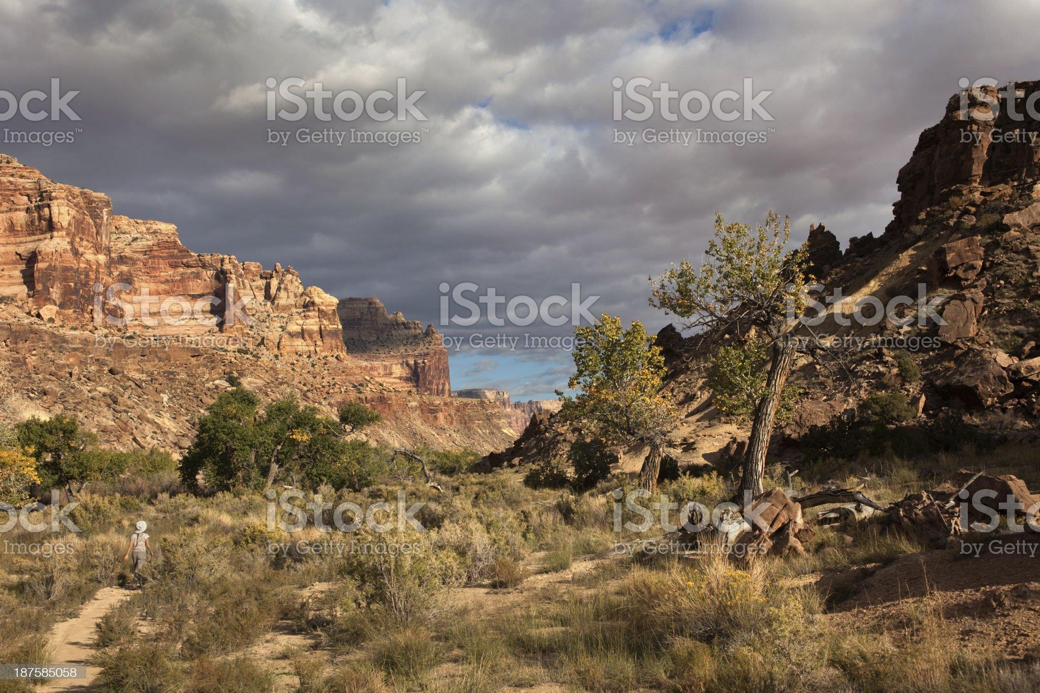 Woman hikes through San Rafael Canyon landscape Utah royalty-free stock photo