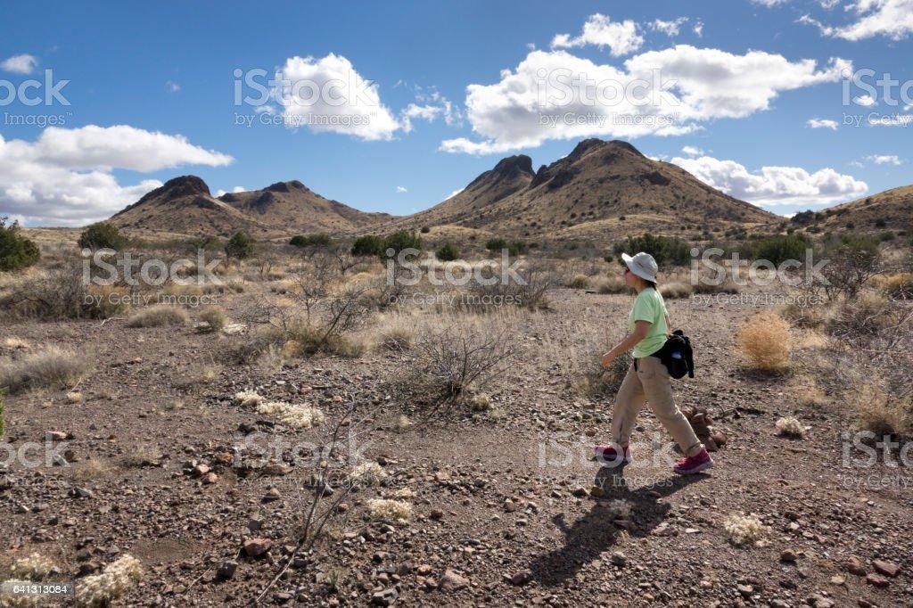 Woman hikes trail Muleshoe Ranch Sonoran Desert Arizona stock photo