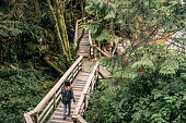 Woman Hiking Green Rainforest Tofino National Park Vancouver Island Canada