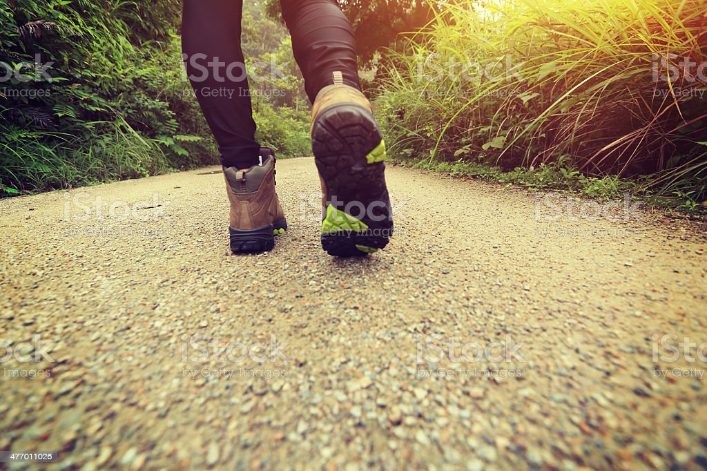 woman hiking on forest trail stock photo