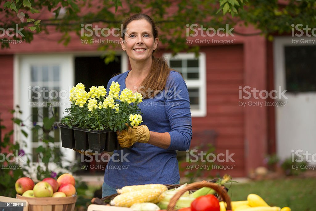 Woman holding a basket of flowers from the garden stock photo