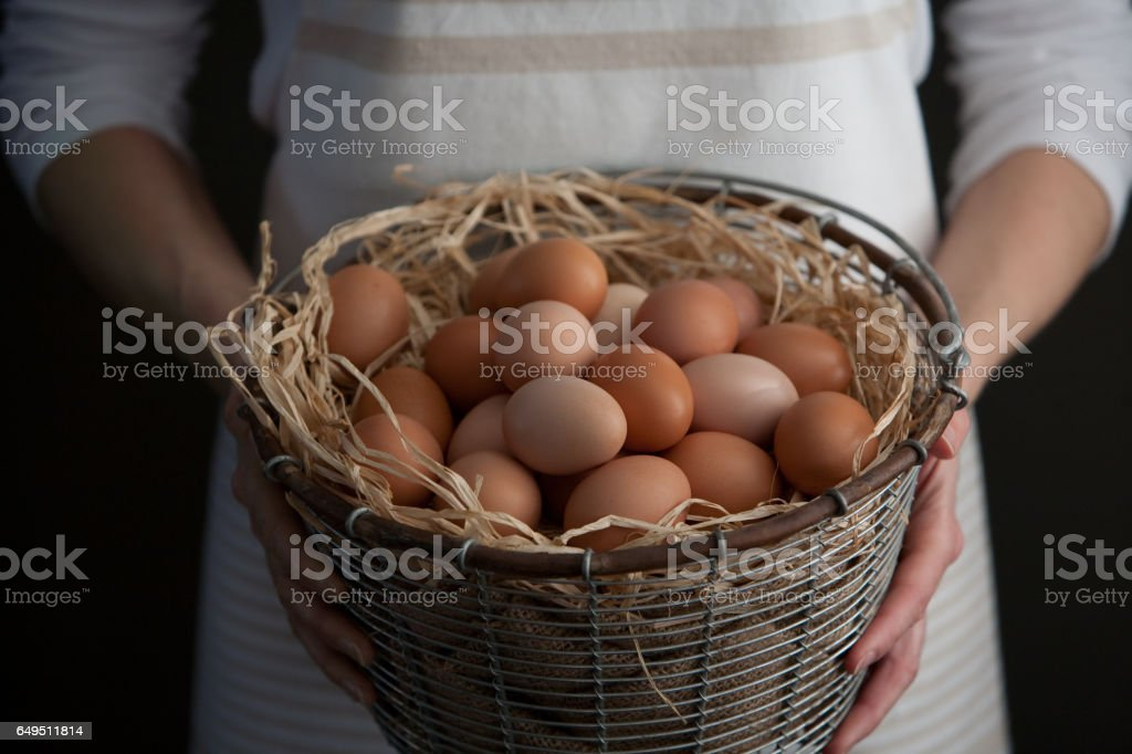 Woman Holding a Basket of Fresh Farm Chicken Eggs stock photo