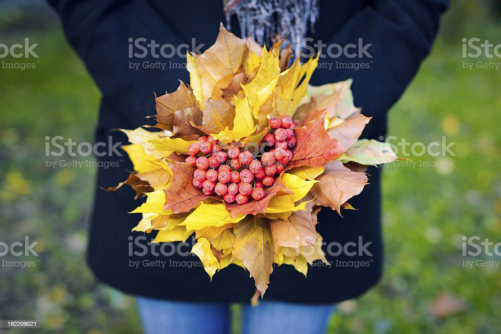 Woman holding a bouquet of maple leaves and mountain ash royalty-free stock photo
