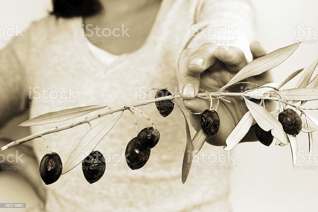 Woman holding a branch of olive royalty-free stock photo