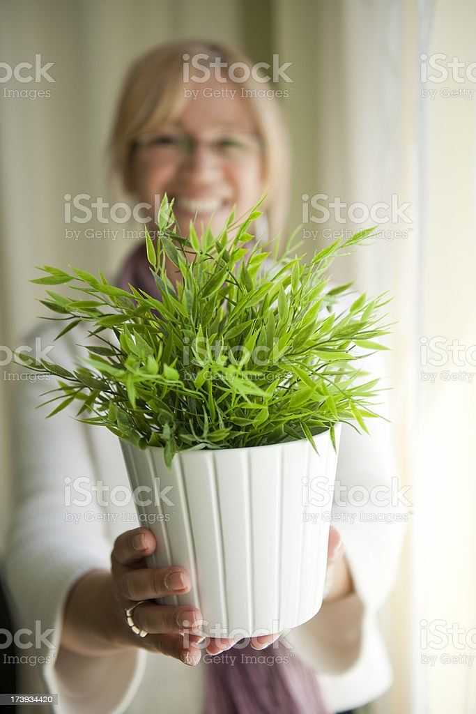 Woman holding a plant royalty-free stock photo