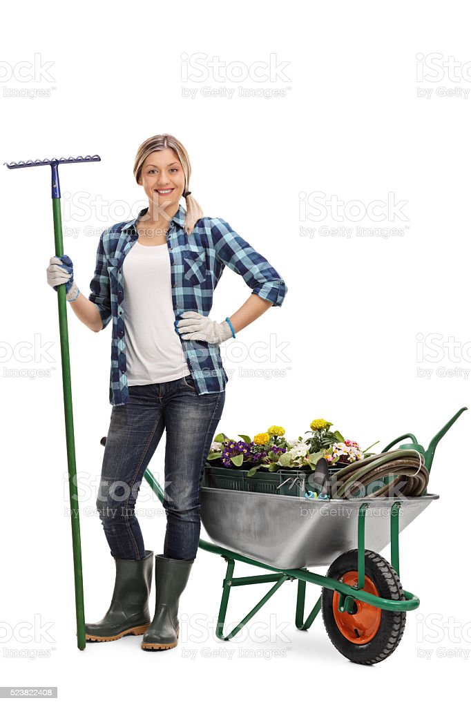 Woman holding a rake next to a wheelbarrow stock photo