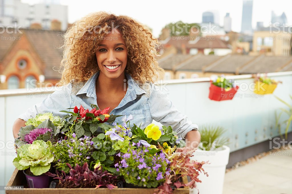 Woman Holding Box Of Plants On Rooftop Garden stock photo