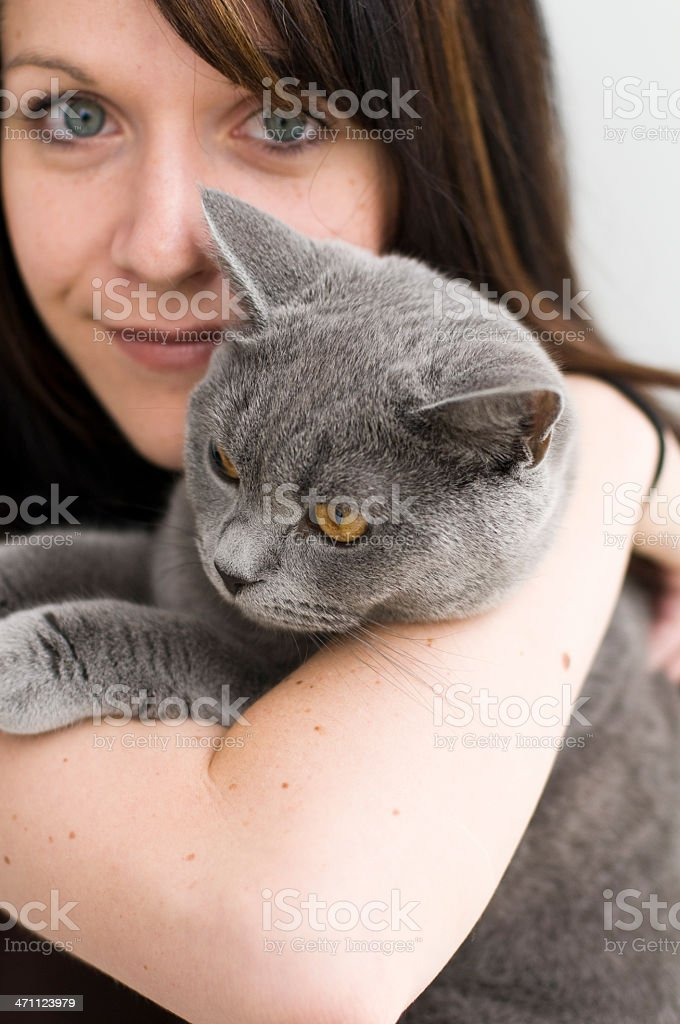 Woman holding Cat British Shorthair Kitten wriggling in arms stock photo