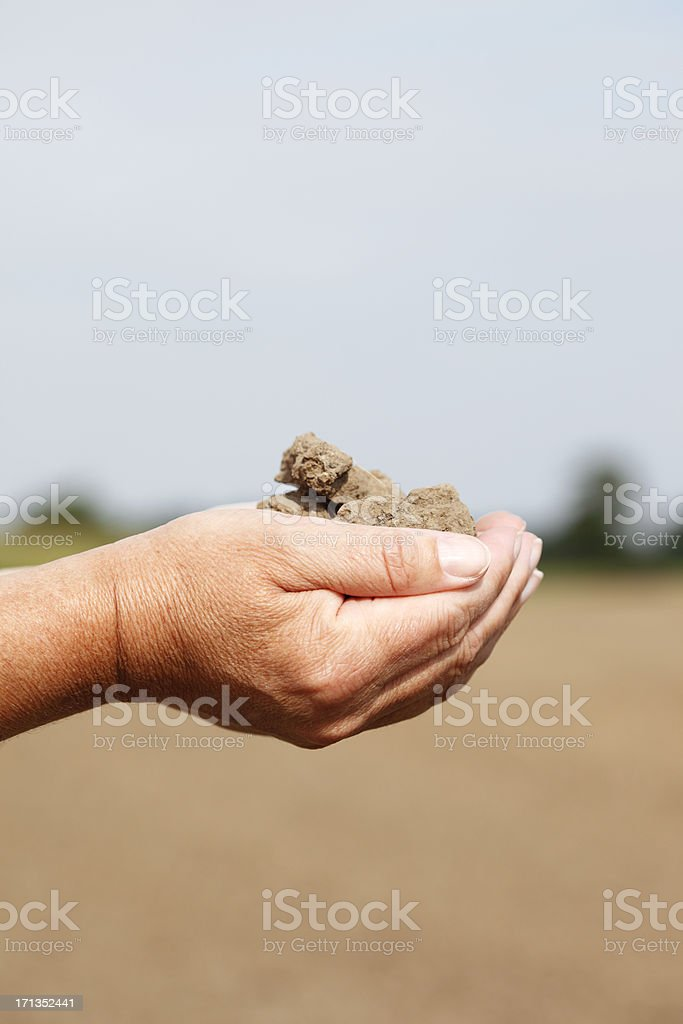 Woman Holding Dirt in Hands royalty-free stock photo