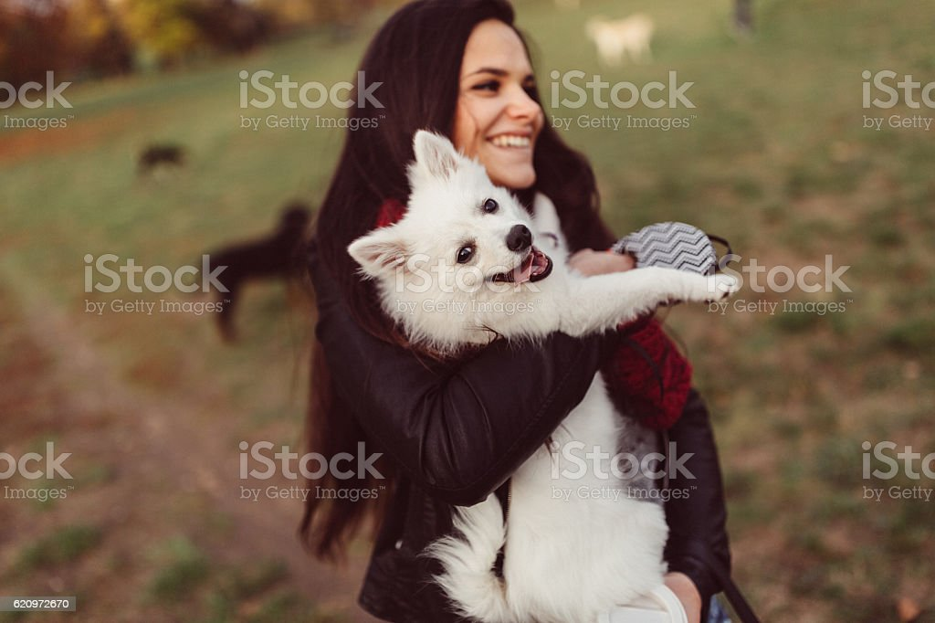 Woman holding dog in hands stock photo