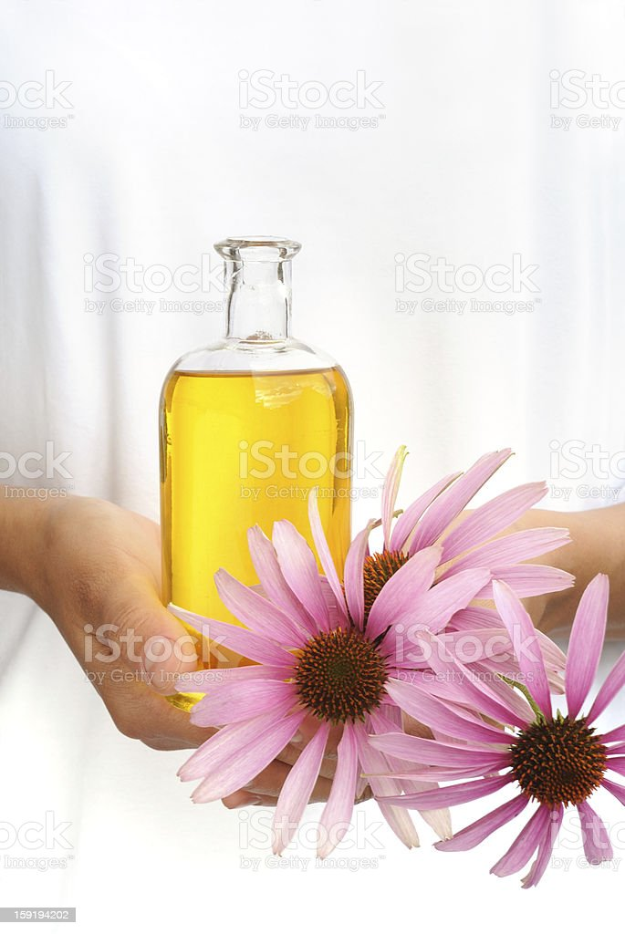 Woman holding essential oil and fresh flowers royalty-free stock photo