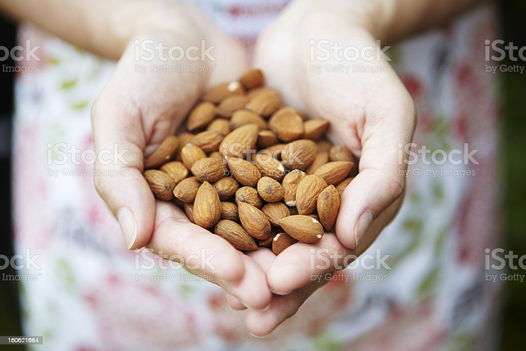 Woman Holding Handful Of Almonds stock photo