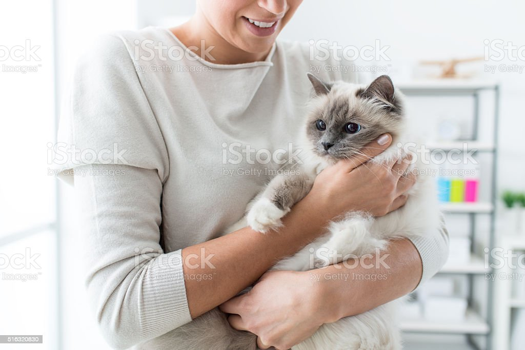Woman holding her lovely cat stock photo