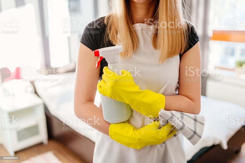 Woman holding rag and spray bottle detergent. stock photo