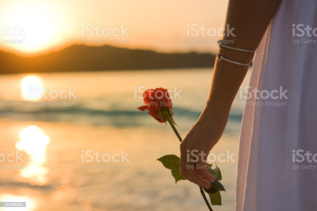 woman holding red rose at a beach and watching sunset stock photo