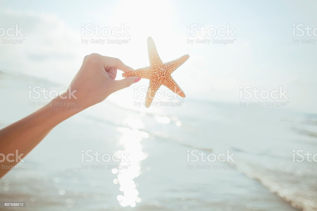 Woman holding starfish at the beach stock photo