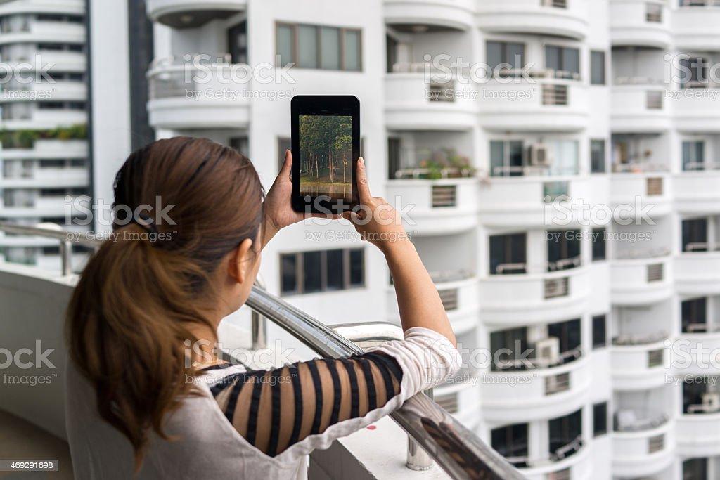 Femme tenant une tablette avec écran sur la forêt photo libre de droits