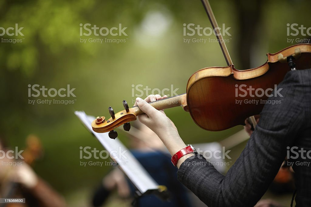 Woman holding violin with a focus on hand stock photo