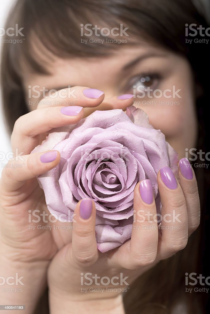 Woman holds lilac-colored rose in manicured hands royalty-free stock photo