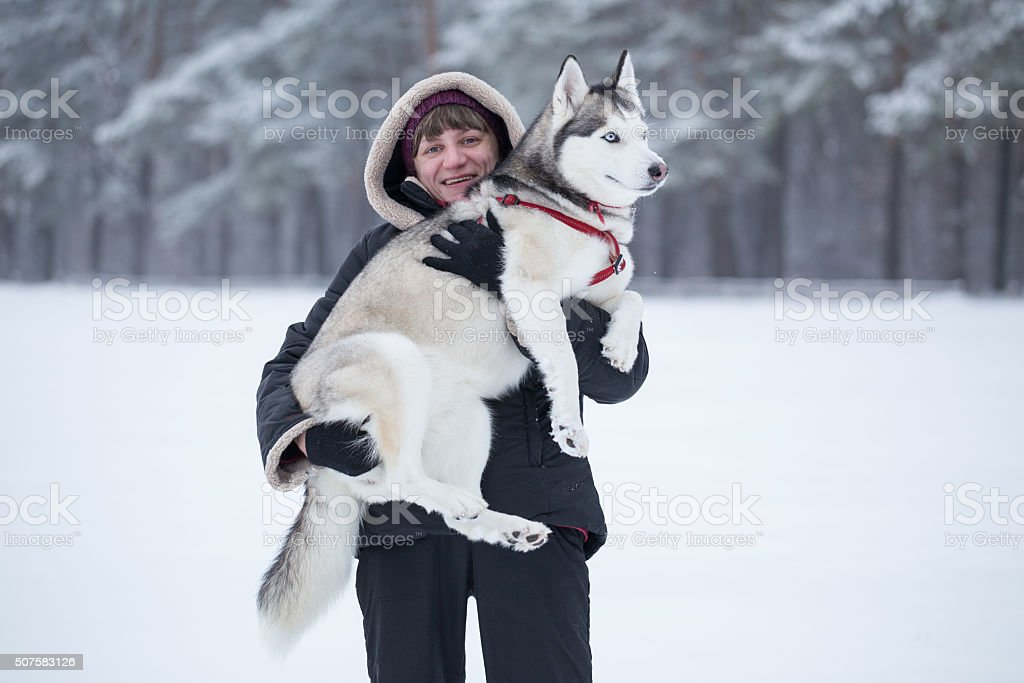 Woman holds Siberian Husky on her arms. stock photo