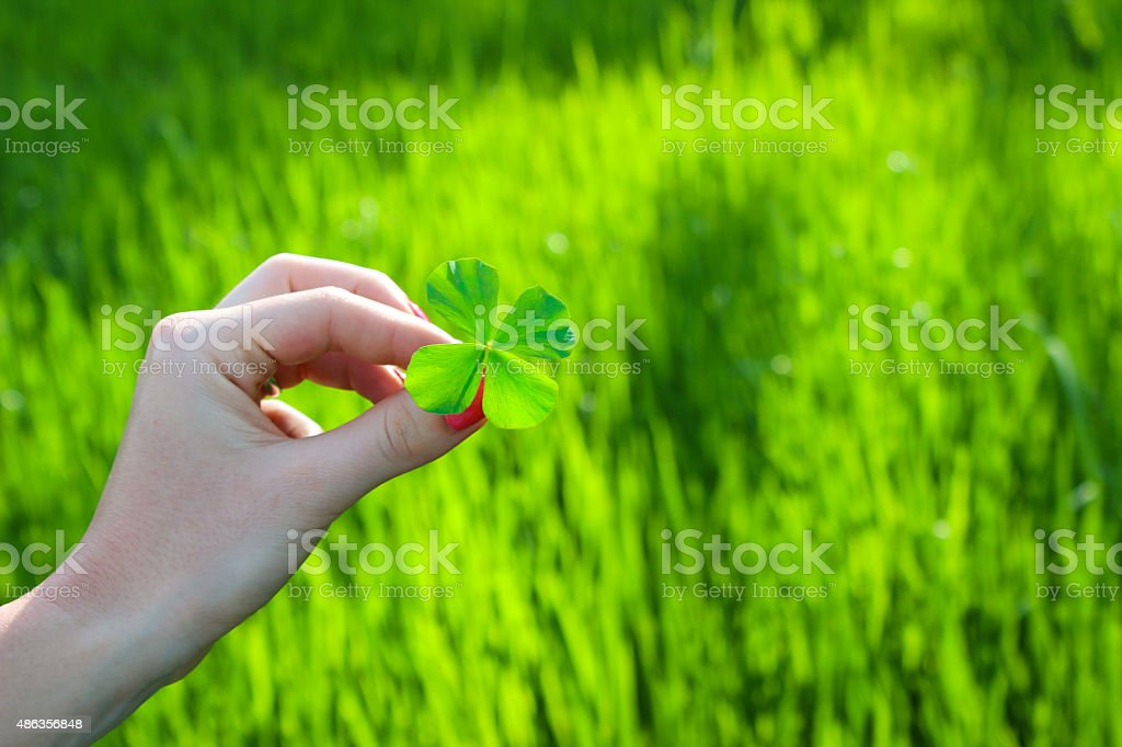 Woman holidng a four leaf clover stock photo