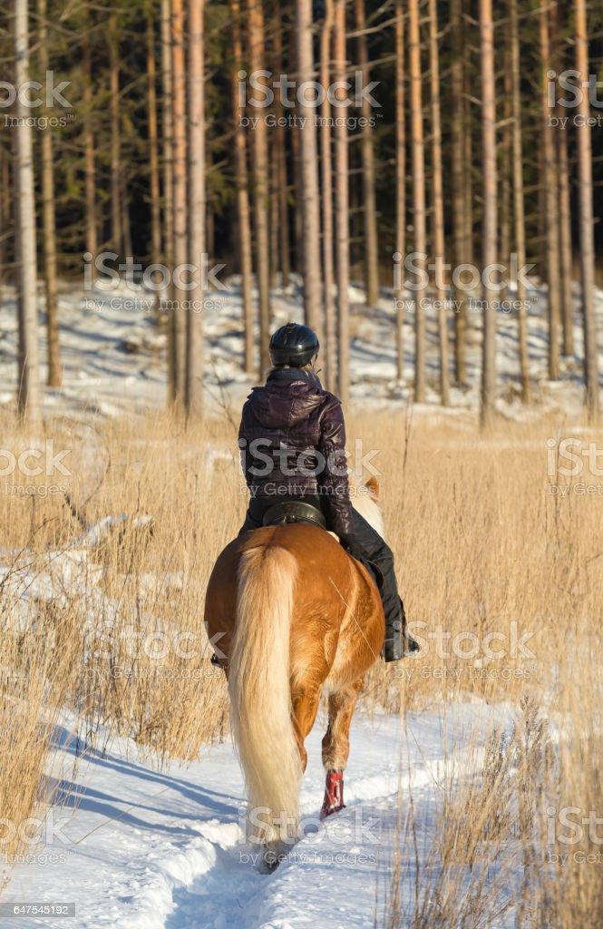 Woman horseback riding stock photo