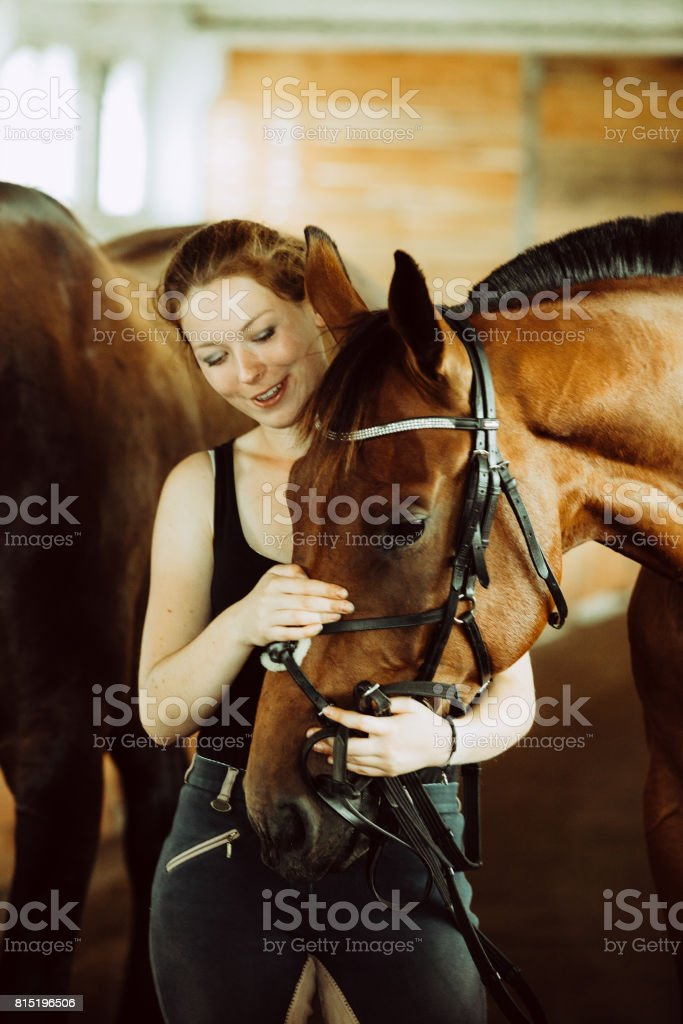 Woman hugging brown horse in stable stock photo