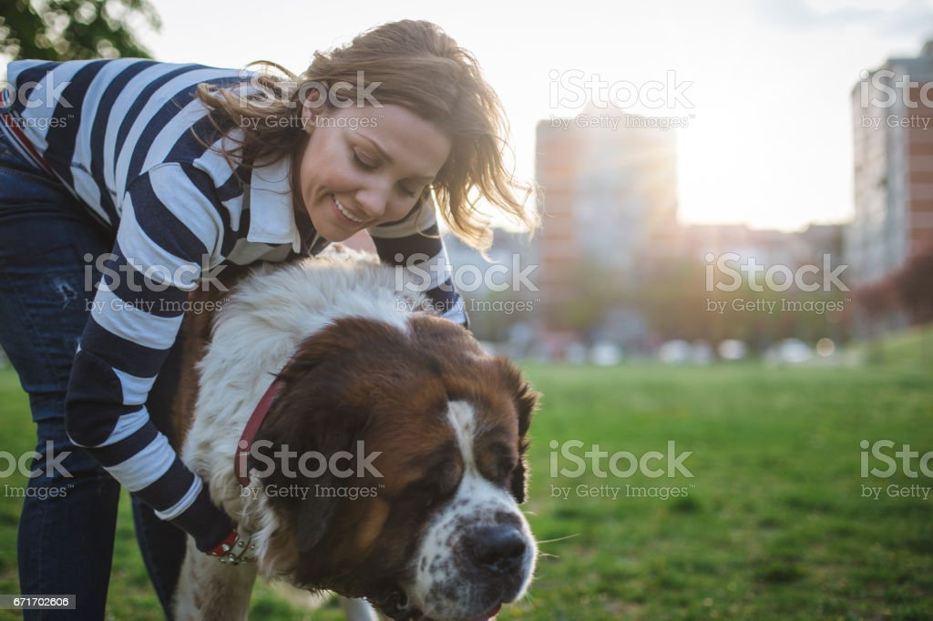 A woman hugging her St.Bernard dog in the park stock photo