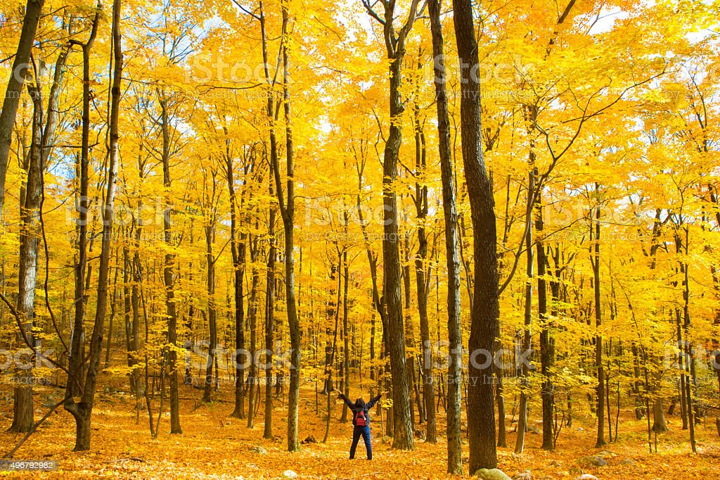 woman Immersing herself in nature stock photo