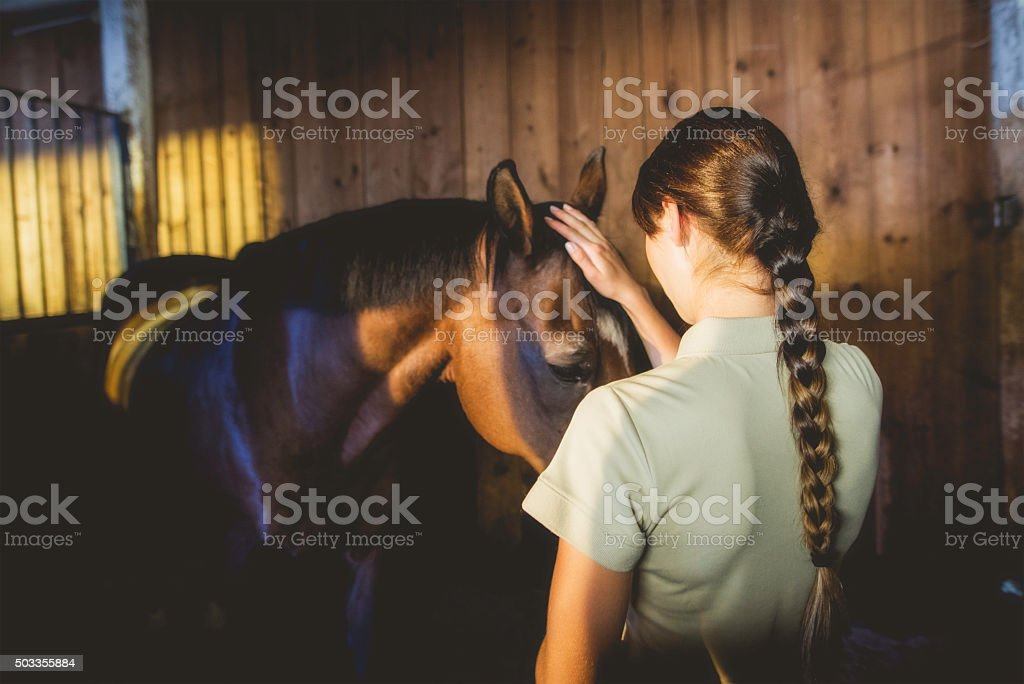 Woman in a barn caressing a horse stock photo