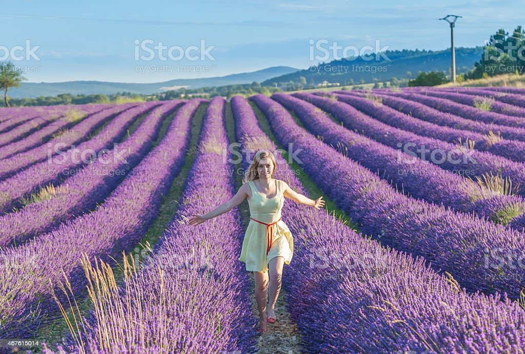 Woman in a dress running between the rows of lavender field stock photo