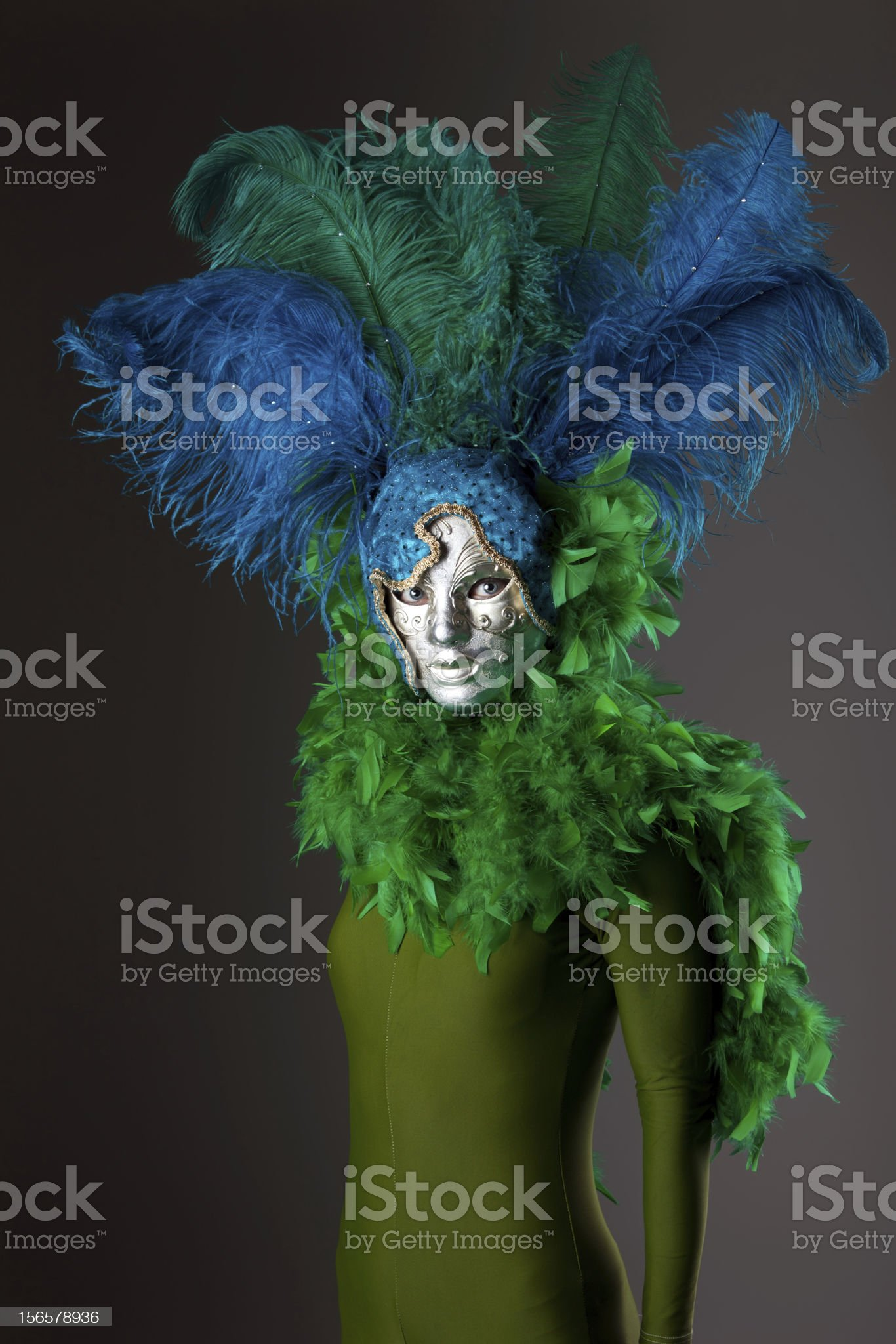 Woman in a Venetian mask royalty-free stock photo