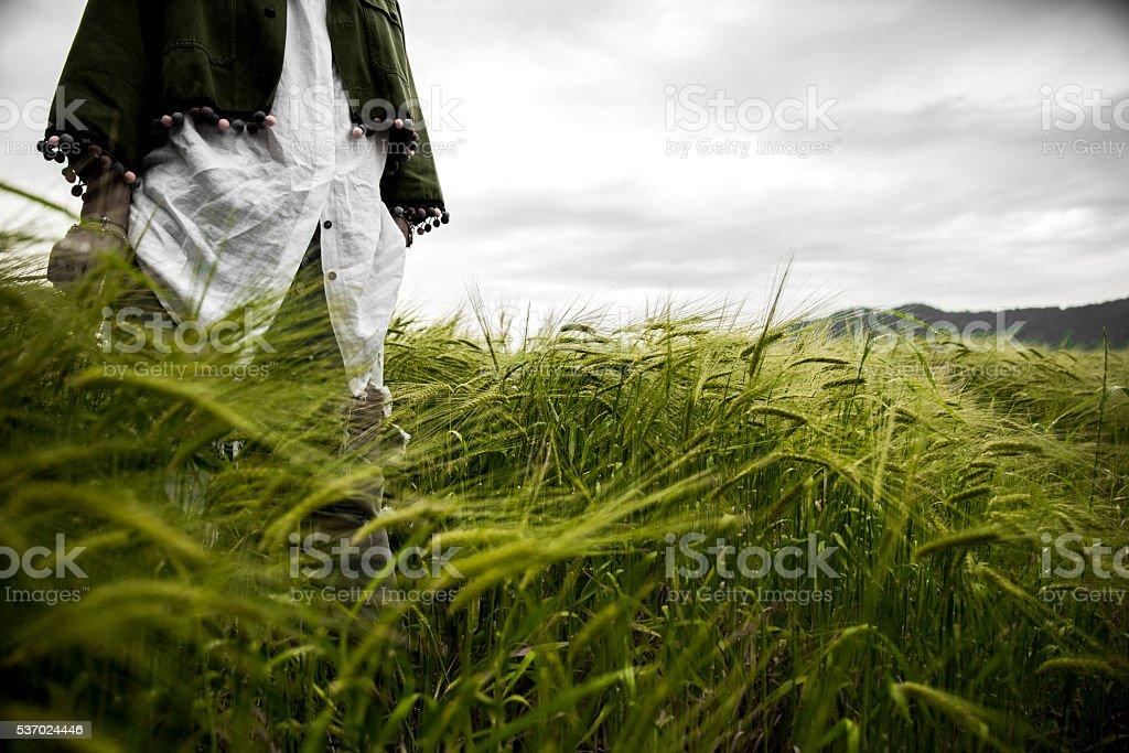 Woman in a wheatfield stock photo