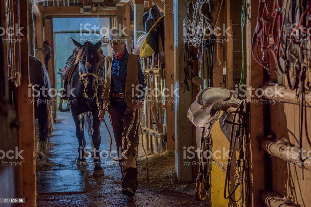 Woman in barn stock photo