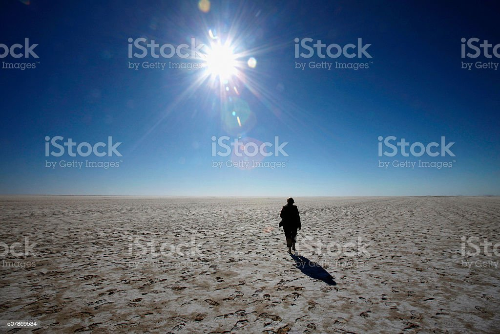 Woman in Desert royalty-free stock photo