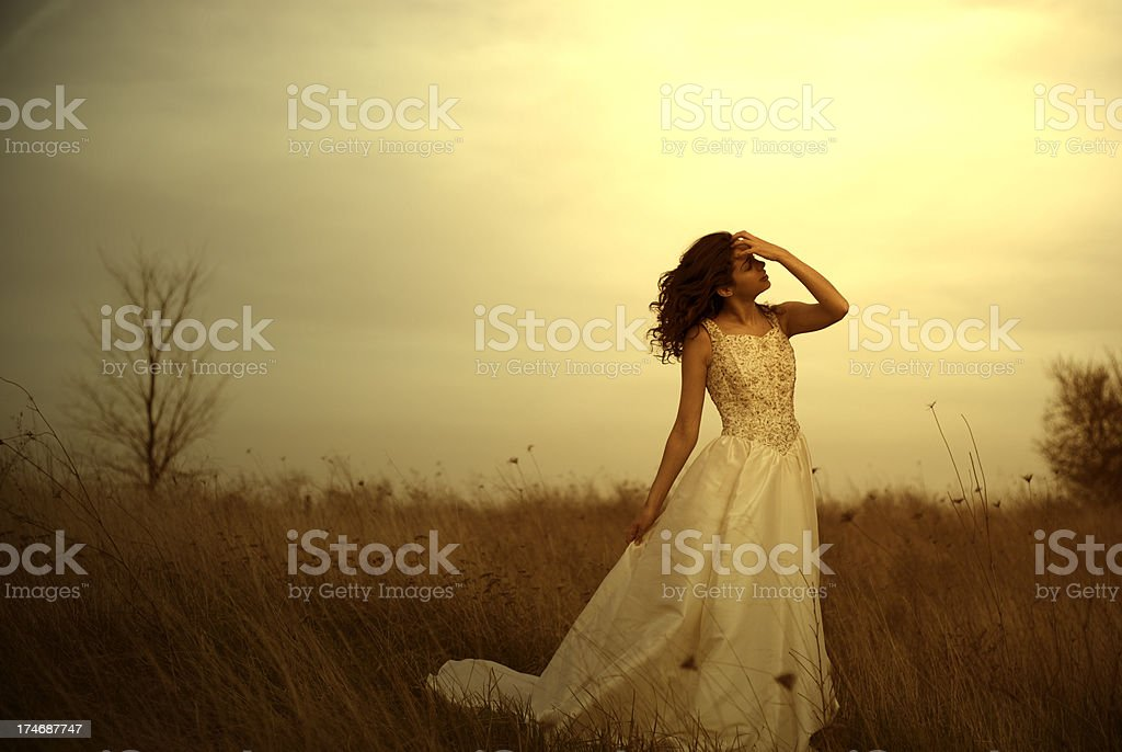 Woman in Dress royalty-free stock photo