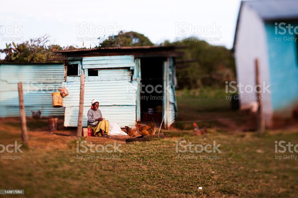 Woman in front of rural house feeding chickens royalty-free stock photo